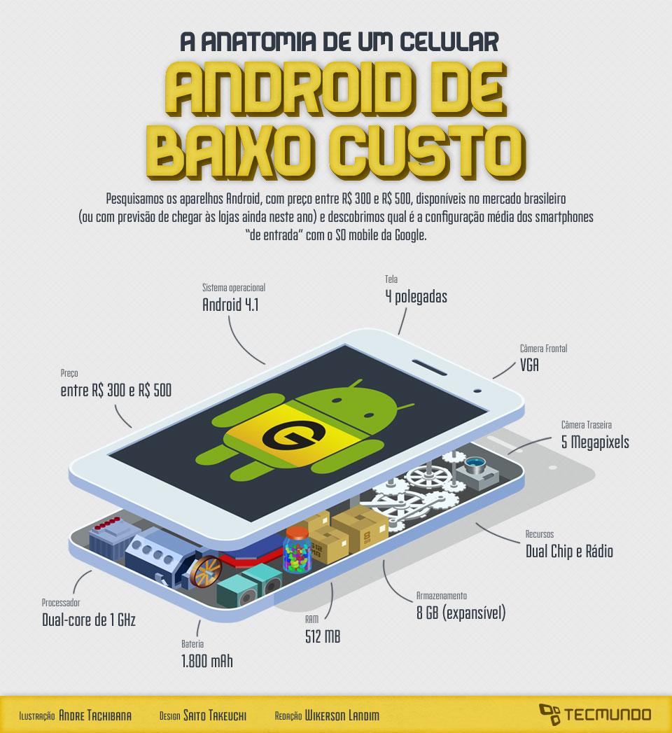 Infográfico - A anatomia de um celular Android de baixo custo [ilustração]