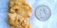 Mulher vende empanado de frango parecido com George Washington