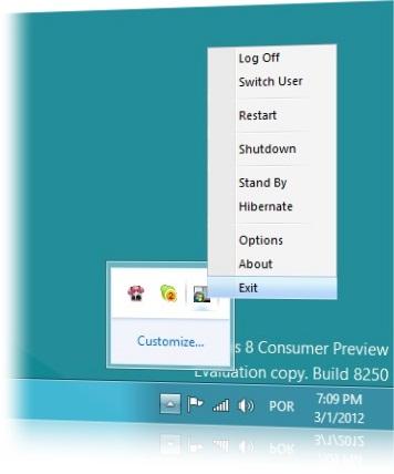 Ícone do programa e opções