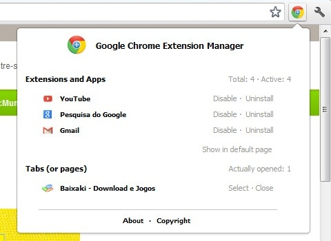 Download manager extension google chrome