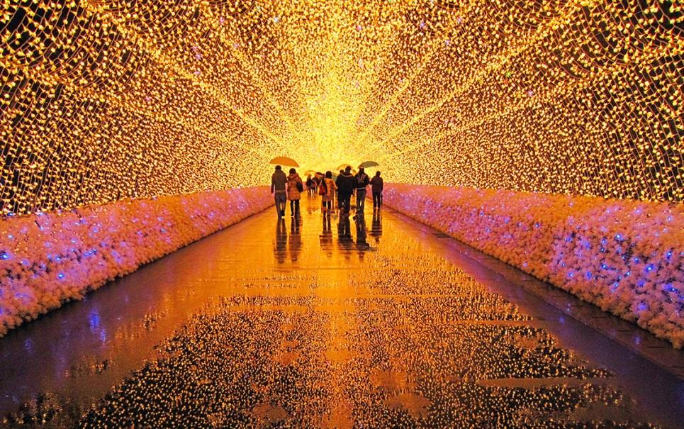Parque japonês é transformado em estonteante espetáculo de luz
