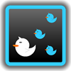 Tweet Followers 0.6.0