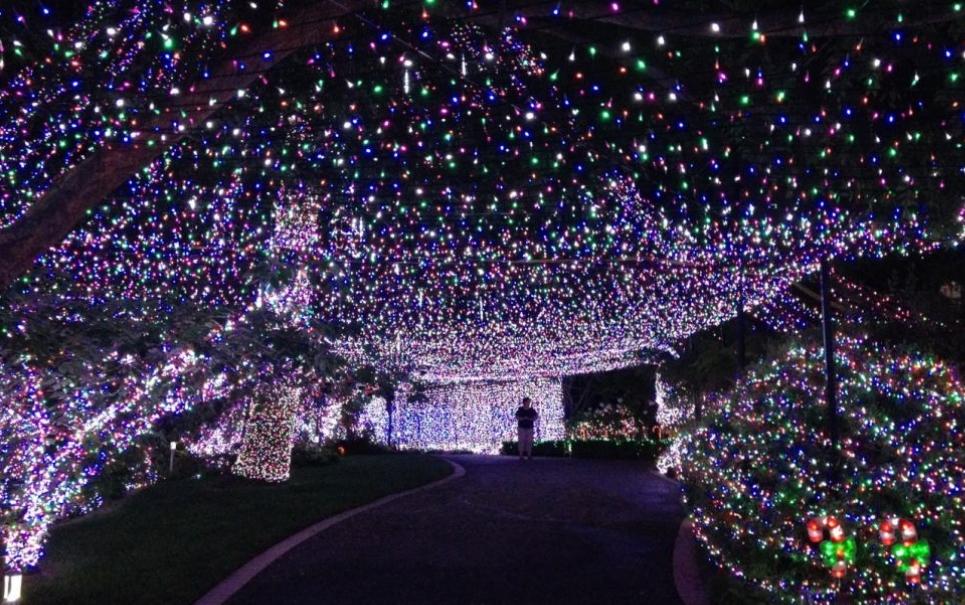 Recorde de Natal: australianos enfeitam casa com mais de 500 mil luzes