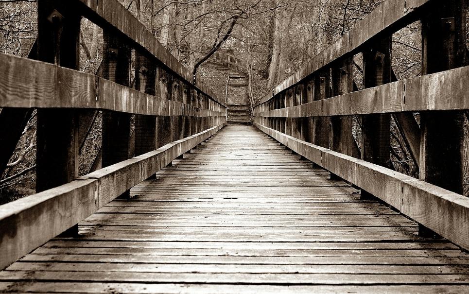 Medo de altura? Confira algumas das pontes mais assustadoras do planeta