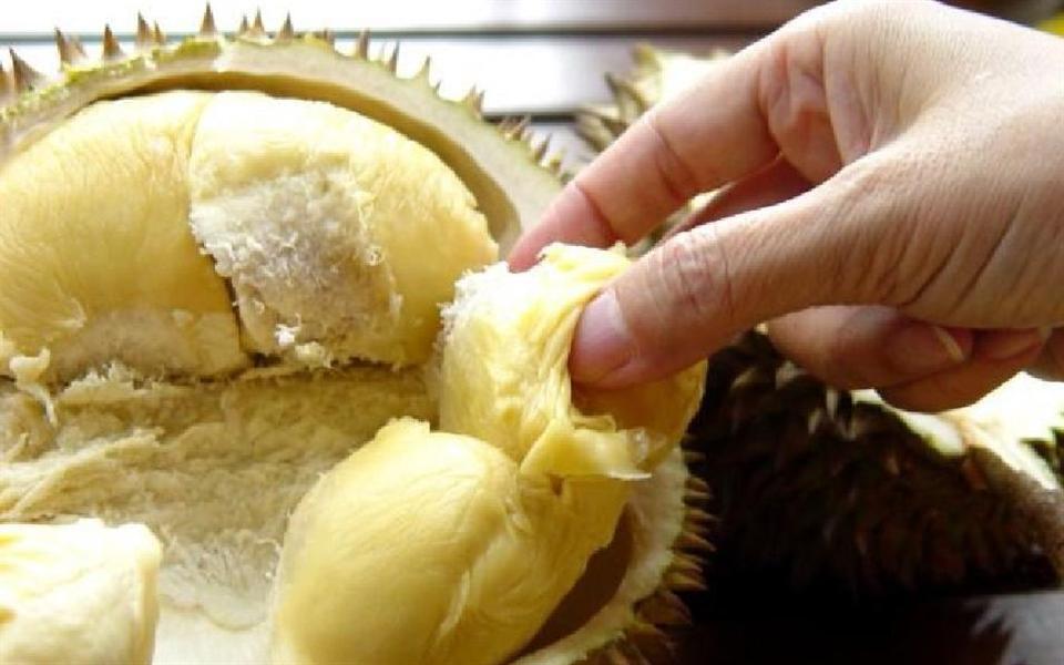 Durian: a fruta com os sabores e odores mais sinistros do planeta