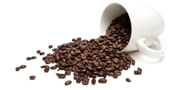 Erro 404: por que os nerds cultuam o café?