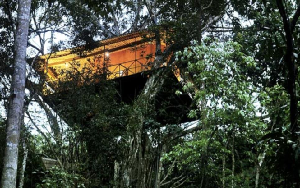 Que tal morar em alguma dessas 13 incríveis casas na árvore ?