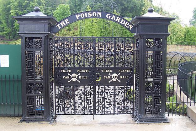 5 lugares que você não vai querer visitar,O Jardim Venenoso de Alnwick