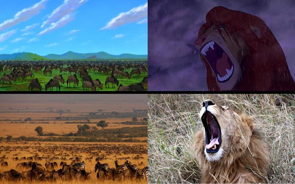 Fotos reais são capturadas em momentos que lembram o clássico O Rei Leão