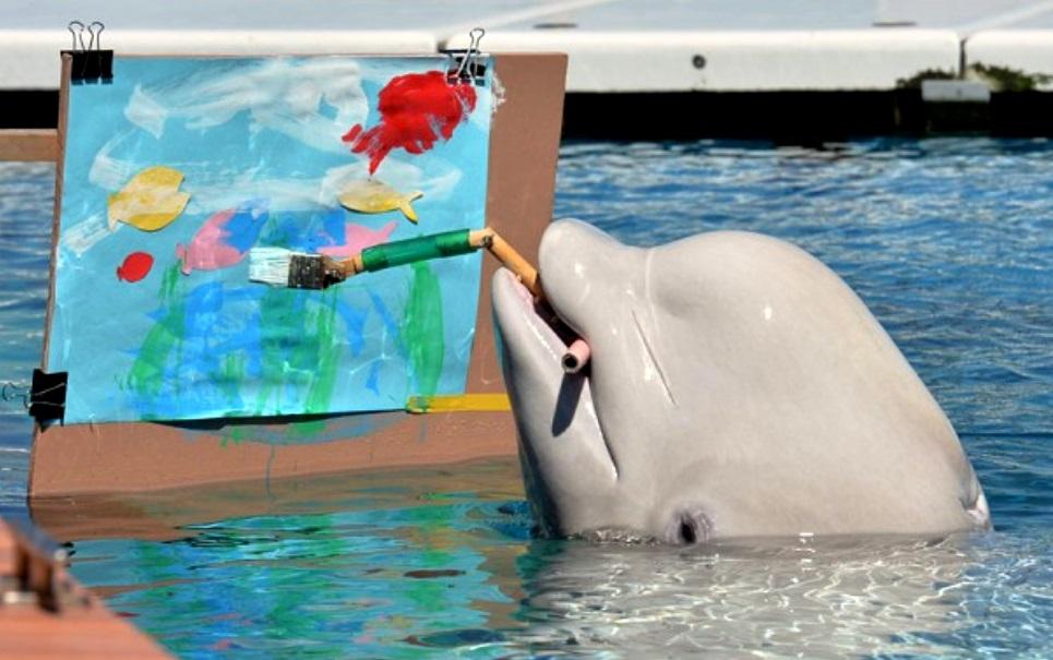 Baleia vira artista e pinta tela no Japão