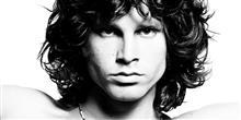 Conhe�a 7 f�sseis com nomes inspirados em estrelas do rock