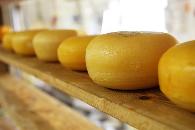 Como surgiu o queijo?? 16112009317367
