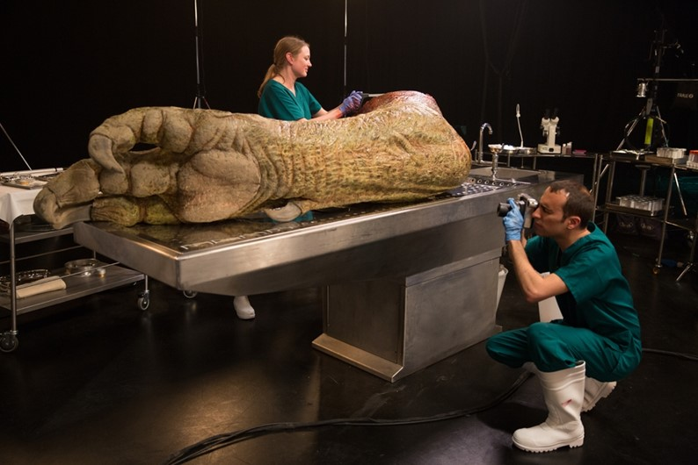 Presas e sangue: confira a autópsia de uma réplica realista de Tiranossauro