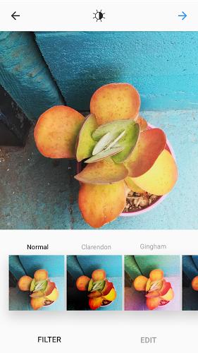 Instagram - Imagem 2 do software