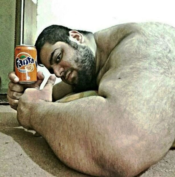 hulk persa