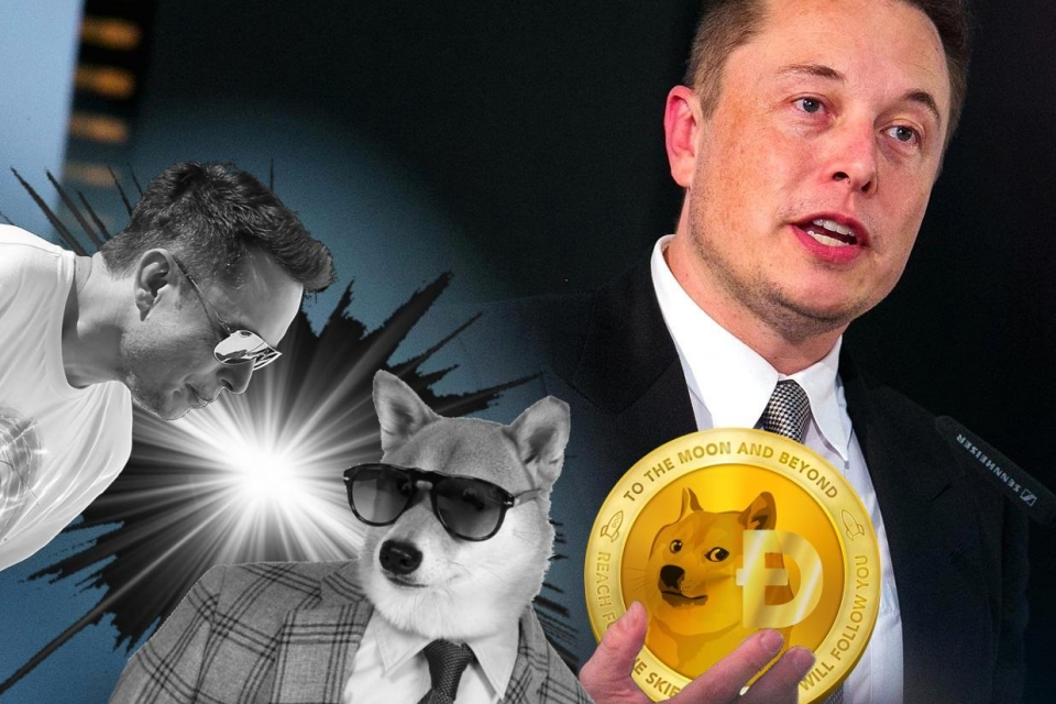 Elon Musk pede ajuda ao criador do Dogecoin para combater scam bots