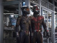 Imagem 3 do Ant-Man and the Wasp Theme