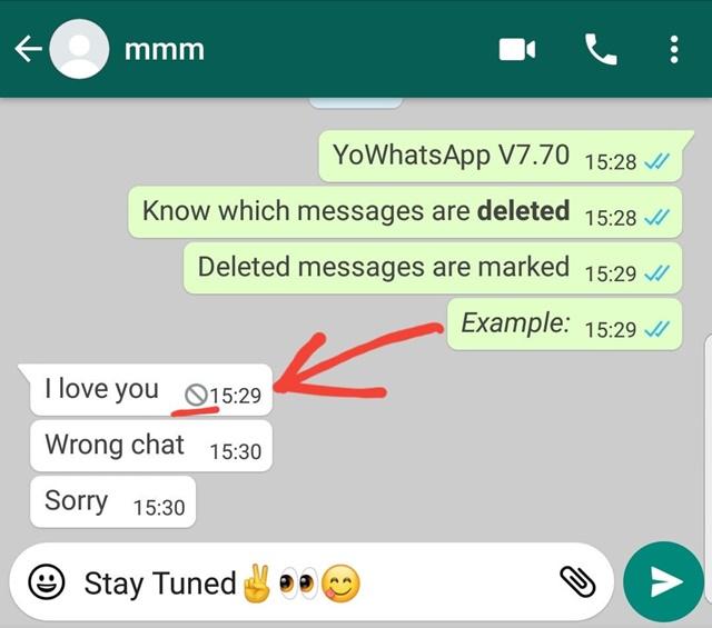 YoWhatsApp - Imagem 1 do software
