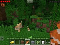 Imagem 1 do Minecraft - Pocket Edition