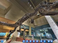 Imagem 1 do Museu Smithsonian: Comprehensive Virtual Tour
