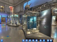 Imagem 7 do Museu Smithsonian: Comprehensive Virtual Tour