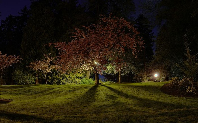 Washington Park, EUA