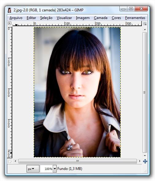 Abra sua imagem no GIMP