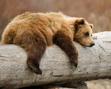 Relaxe!