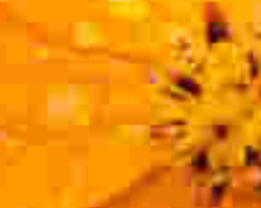 Detalhe da imagem.