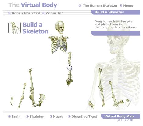 Jogo do MEDtropolis Virtual Body