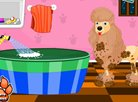 Cute Poodle Spa Day