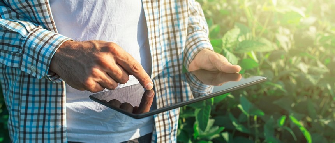 Tecnologia agrícola: modernização do campo evolui gradativamente