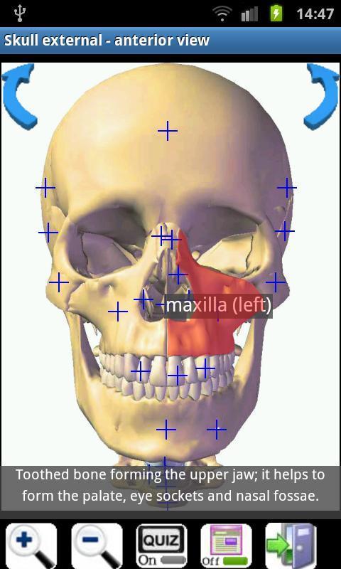 Visual Bones - Imagem 2 do software