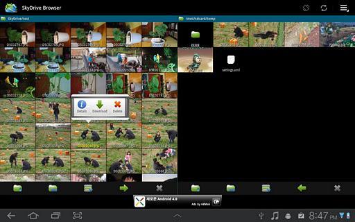 SkyDrive Browser - Imagem 1 do software