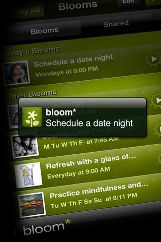 Bloom - Imagem 3 do software