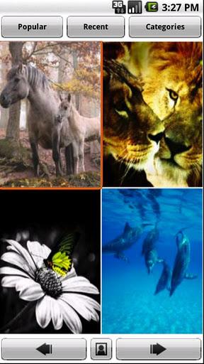 Backgrounds - Imagem 1 do software