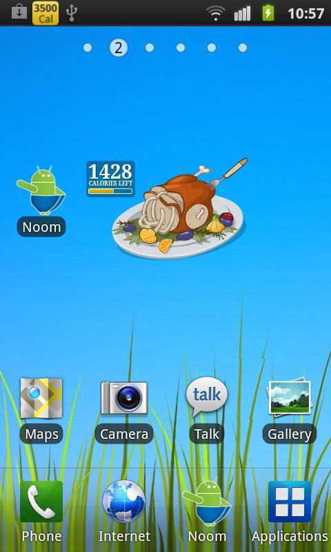 Burn the Turkey - Widget - Imagem 2 do software
