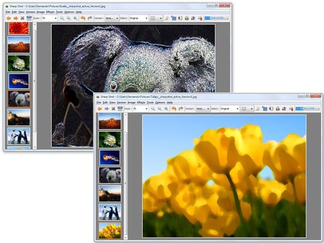 SharpShot - Imagem 2 do software