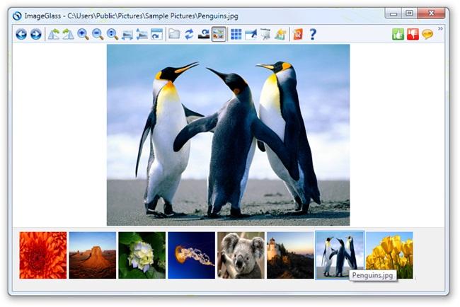 ImageGlass Download to Windows Grátis