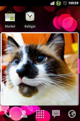 Slideshow (Homescreen Widget) - Imagem 1 do software