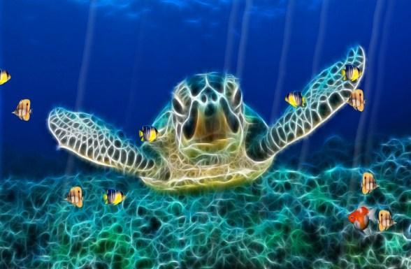 papel de parede animado para pc aquario