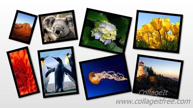 montagens de fotos gratis no baixaki