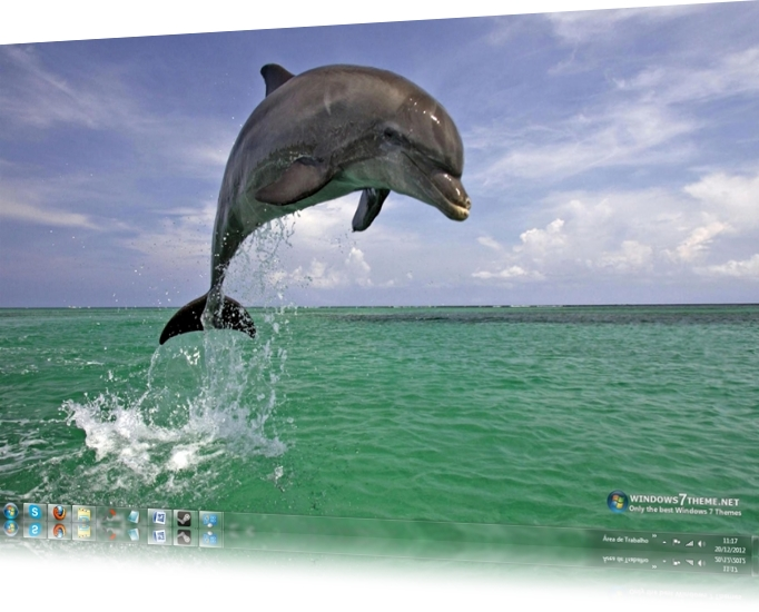 Dolphins Windows 7 Theme