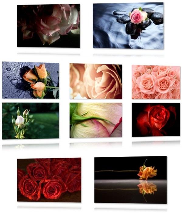 Roses Theme - Imagem 1 do software