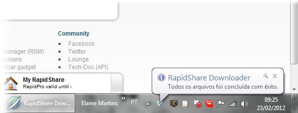 RapidShare Downloader - Imagem 2 do software