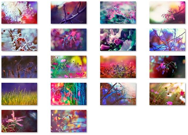 Tema Jardim dos Sonhos - Imagem 2 do software