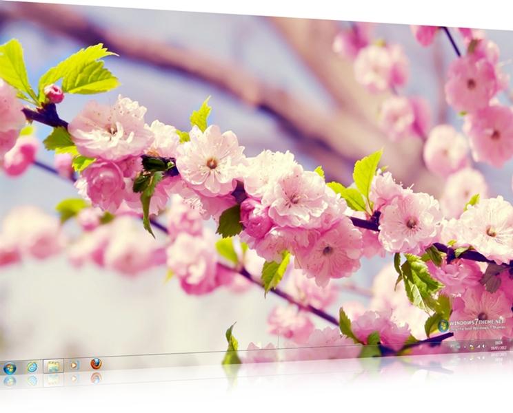 Spring Flowers Windows 7 Theme