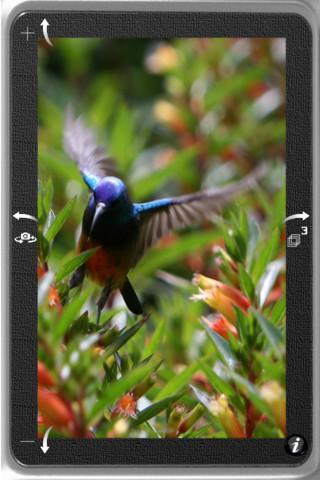 TapShot - Imagem 1 do software