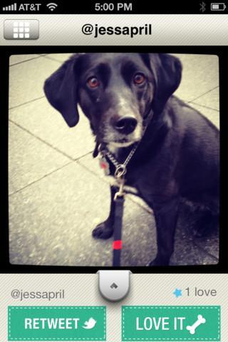 Dogsly - Imagem 1 do software