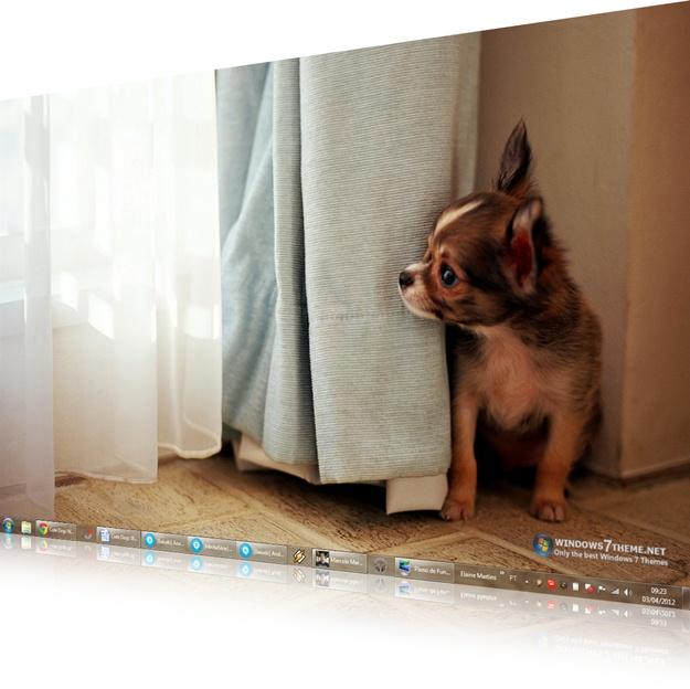 Cute Dogs Windows 7 Theme - Imagem 1 do software